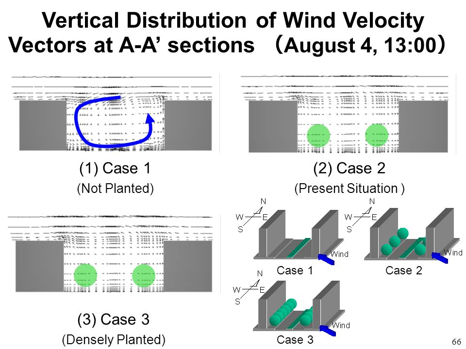 Vertical Distribution of Wind Velocity Vectors at A-A' sections (August 4, 13:00)