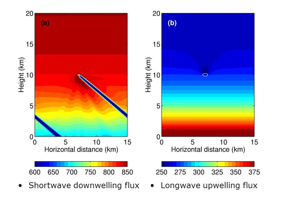 Shortwave downwelling flux