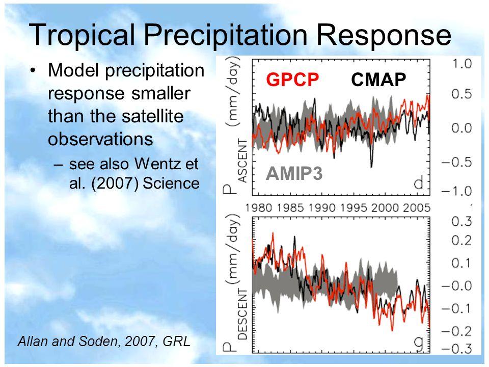 Tropical Precipitation Response