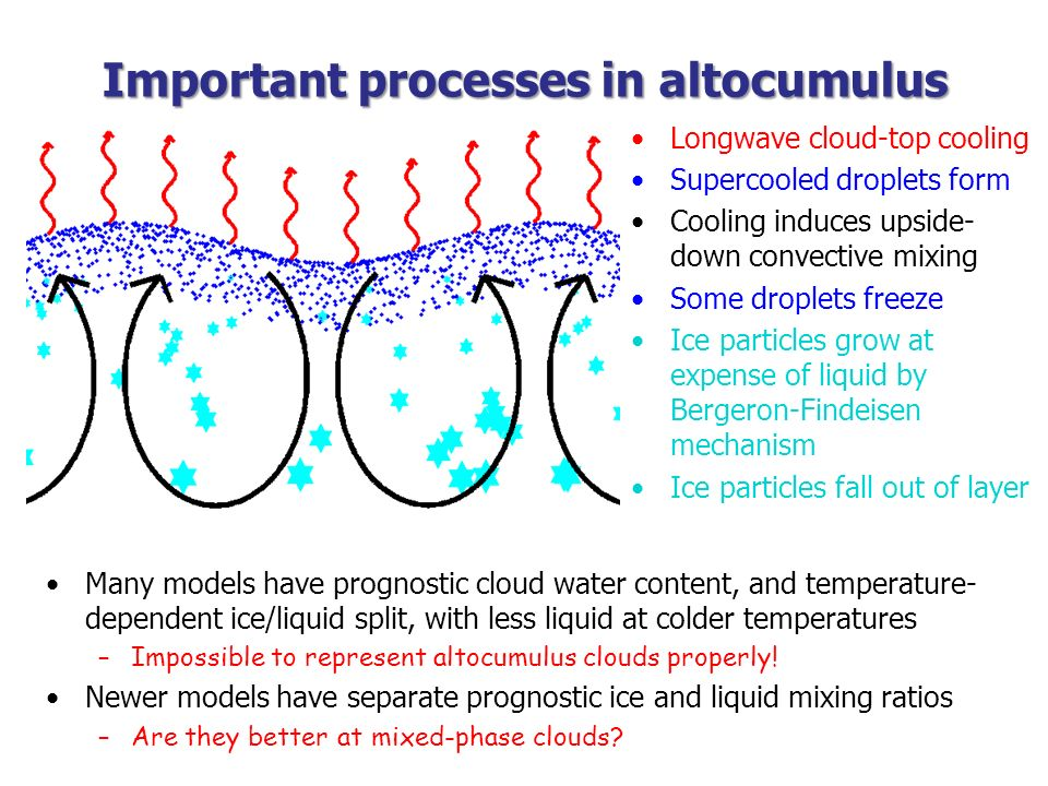 Important processes in altocumulus