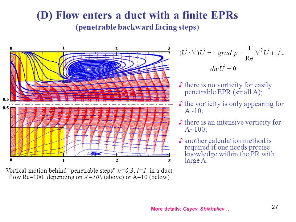 (D) Flow enters a duct with a finite EPRs (penetrable backward facing steps)