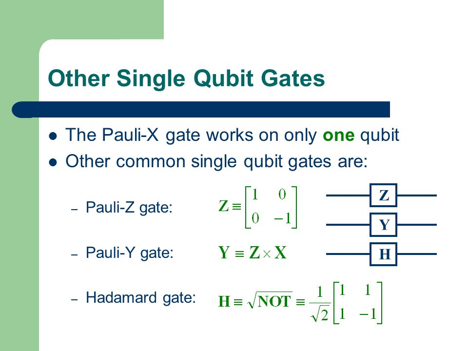 Other Single Qubit Gates