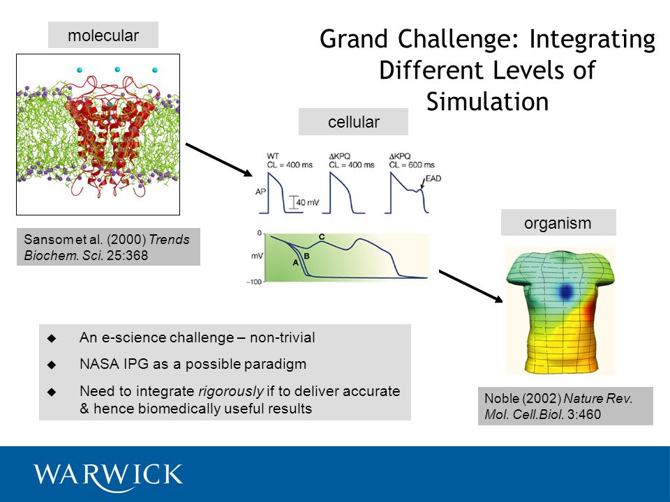 Grand Challenge: Integrating Different Levels of Simulation