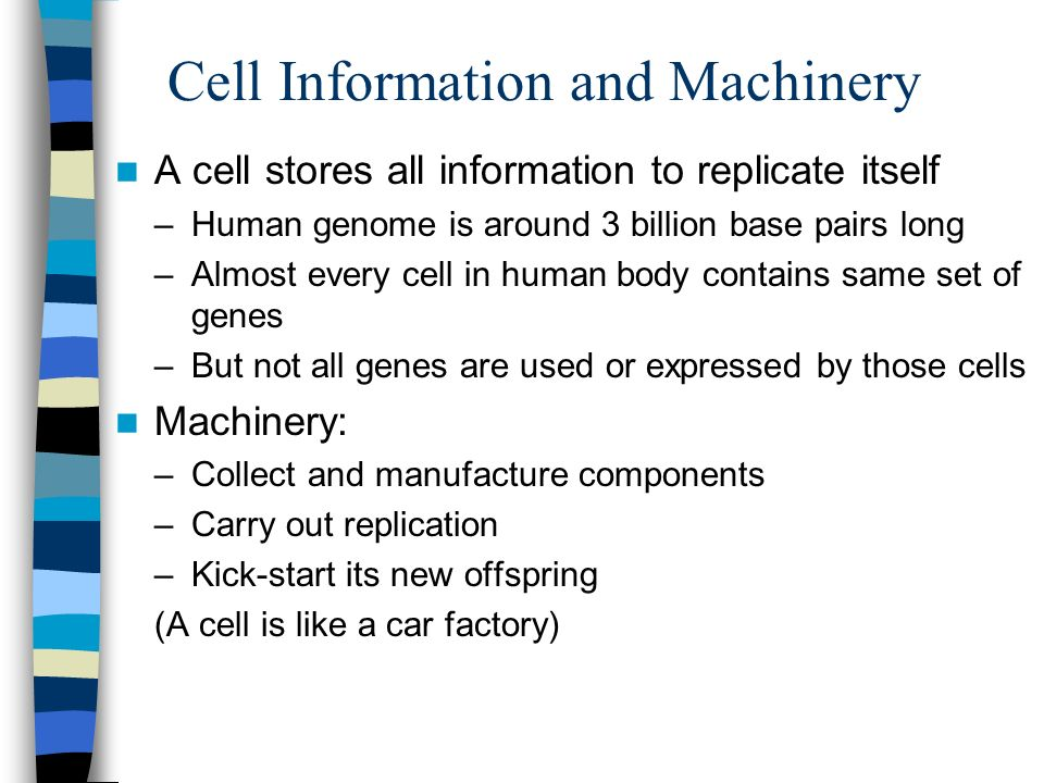 Cell Information and Machinery