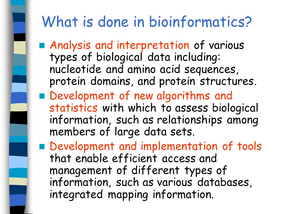 What is done in bioinformatics