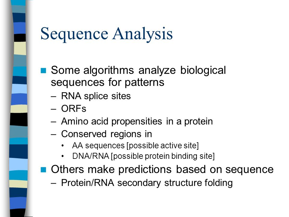 Sequence Analysis Some algorithms analyze biological sequences for patterns. RNA splice sites. ORFs.