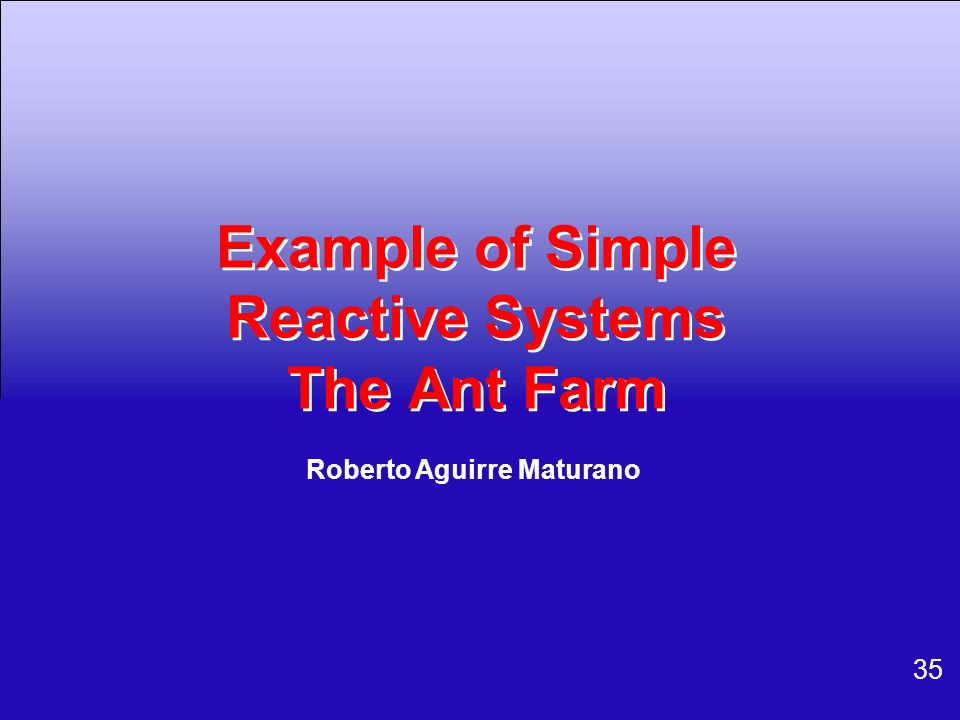 Example of Simple Reactive Systems The Ant Farm