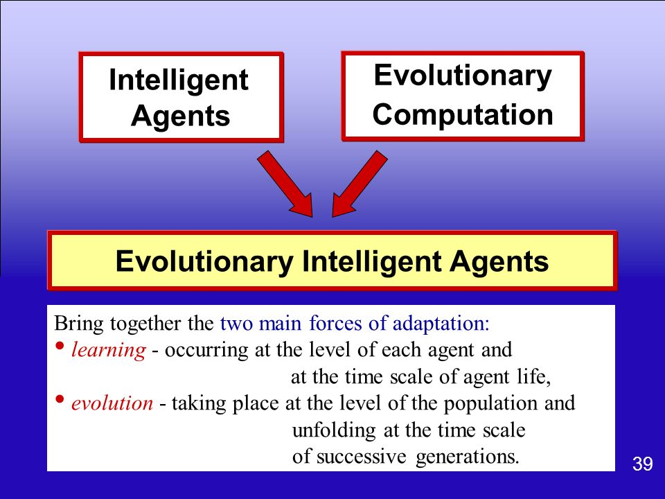 Evolutionary Intelligent Agents
