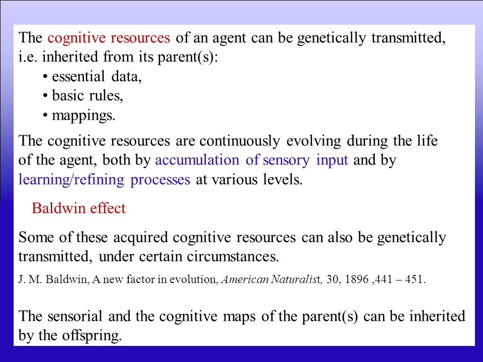 The cognitive resources of an agent can be genetically transmitted,