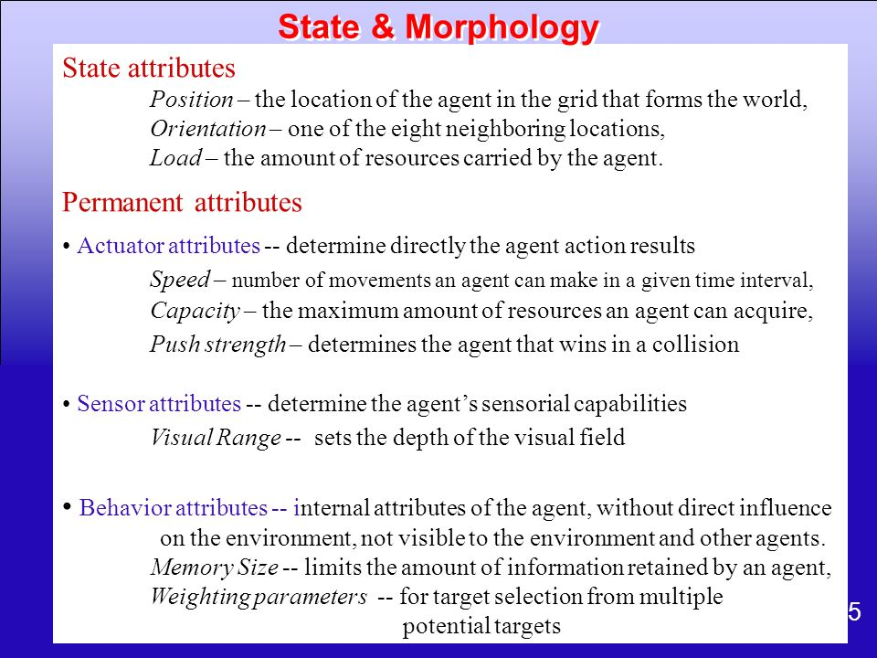 State & Morphology State attributes Permanent attributes