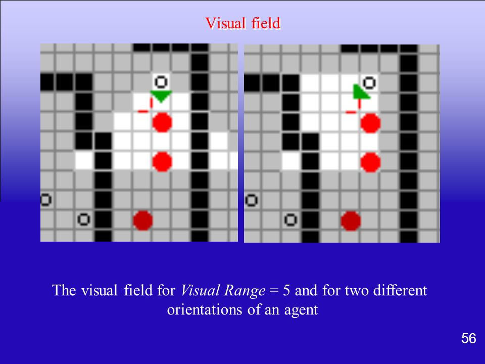 The visual field for Visual Range = 5 and for two different