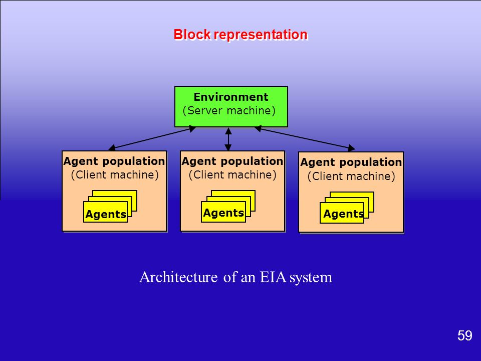Architecture of an EIA system
