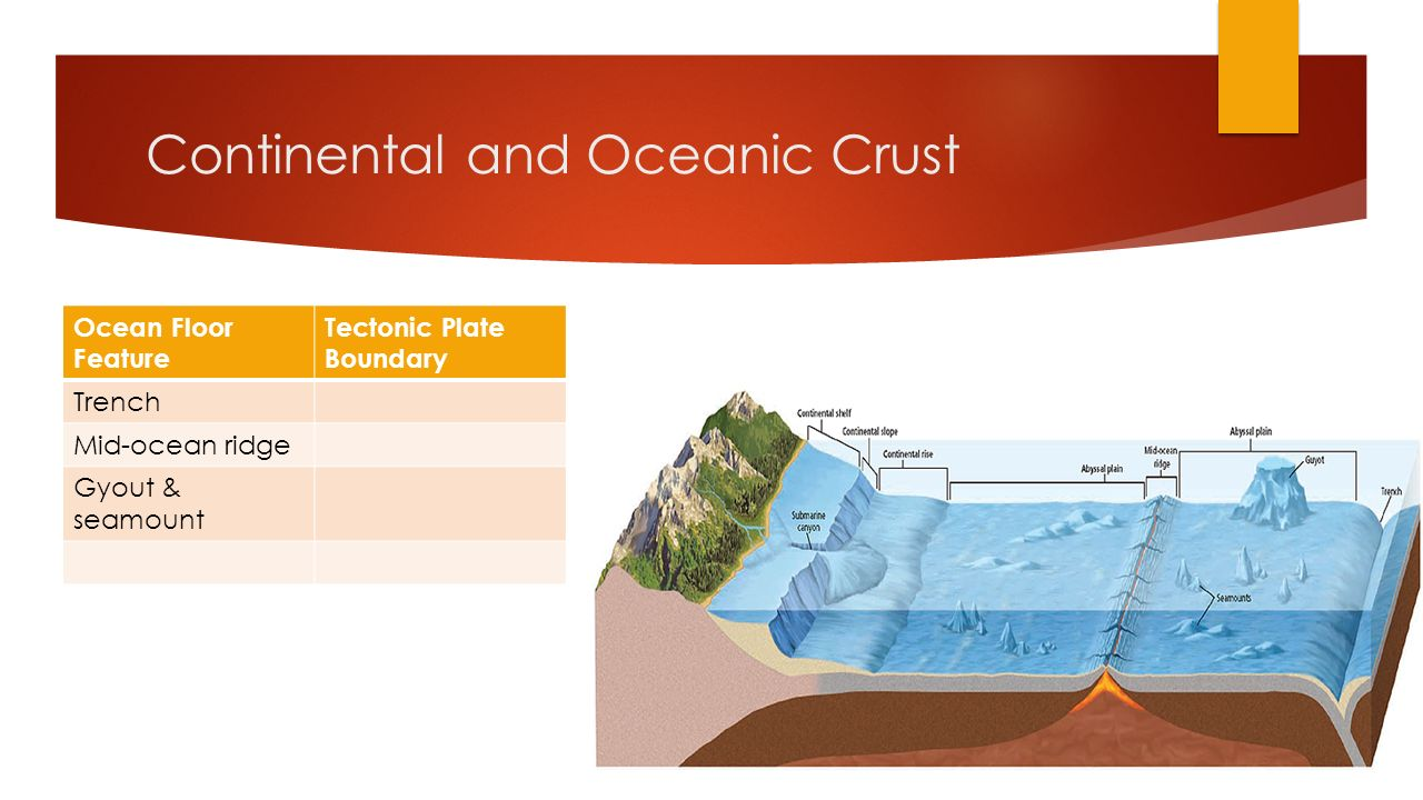 Plate tectonics chapters 10 11 12 13 19 sect 1 2 for Ocean floor features definition