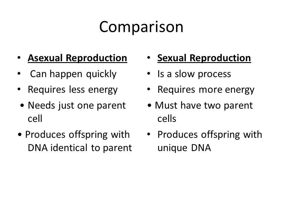 comparison of sexual and asexual reproduction in plants Presentation and worksheets for a lesson on asexual reporduction and  comparing this with sexual video clips included and the final slide is a.