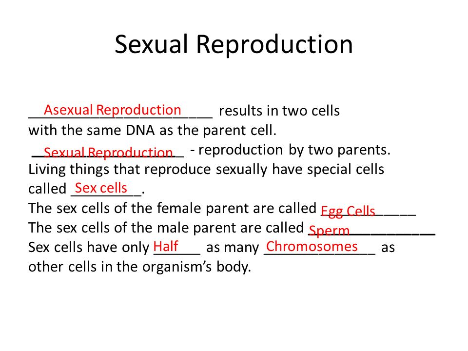Male sex cells are called — 6