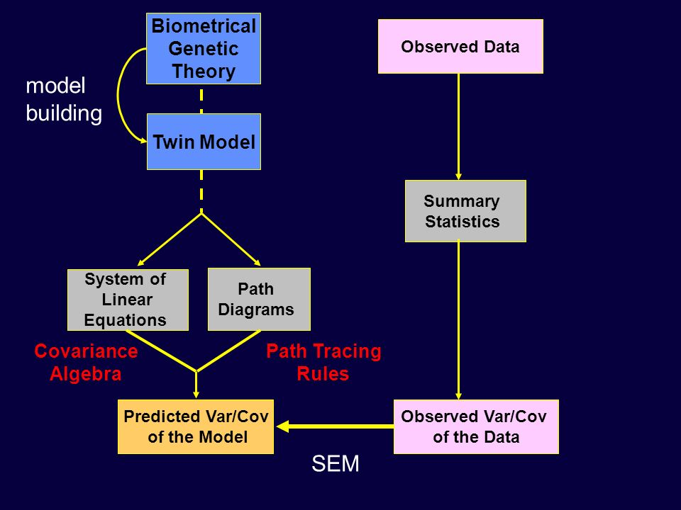 model building SEM Biometrical Genetic Theory Twin Model Covariance