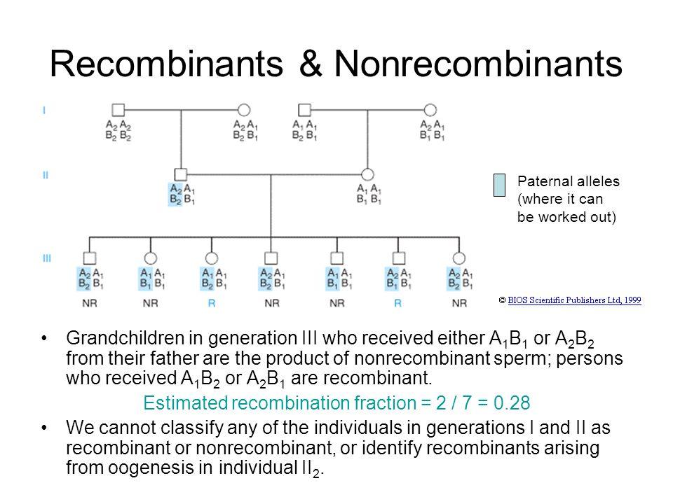 Recombinants & Nonrecombinants