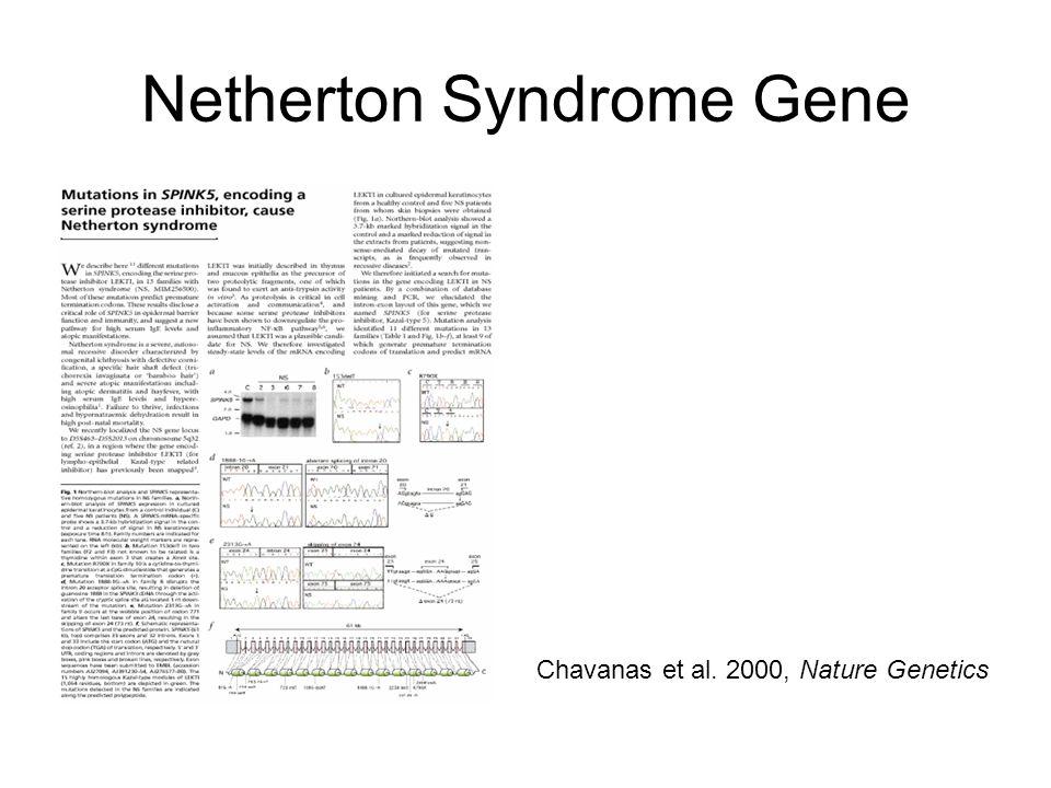 Netherton Syndrome Gene
