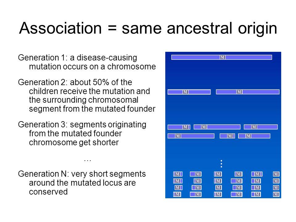 Association = same ancestral origin