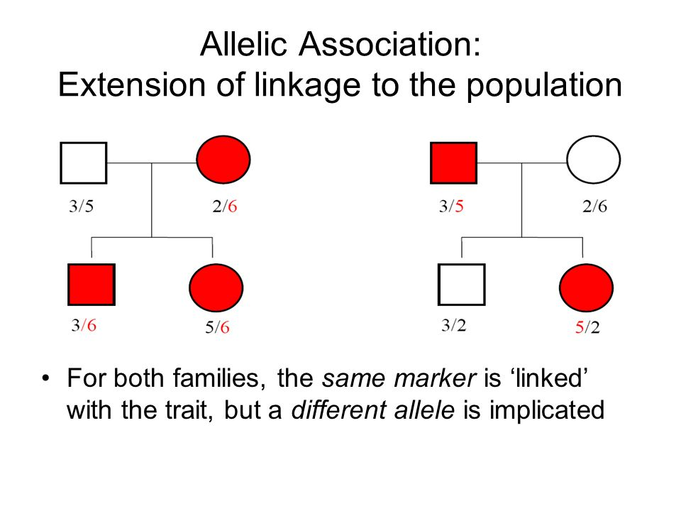 Allelic Association: Extension of linkage to the population