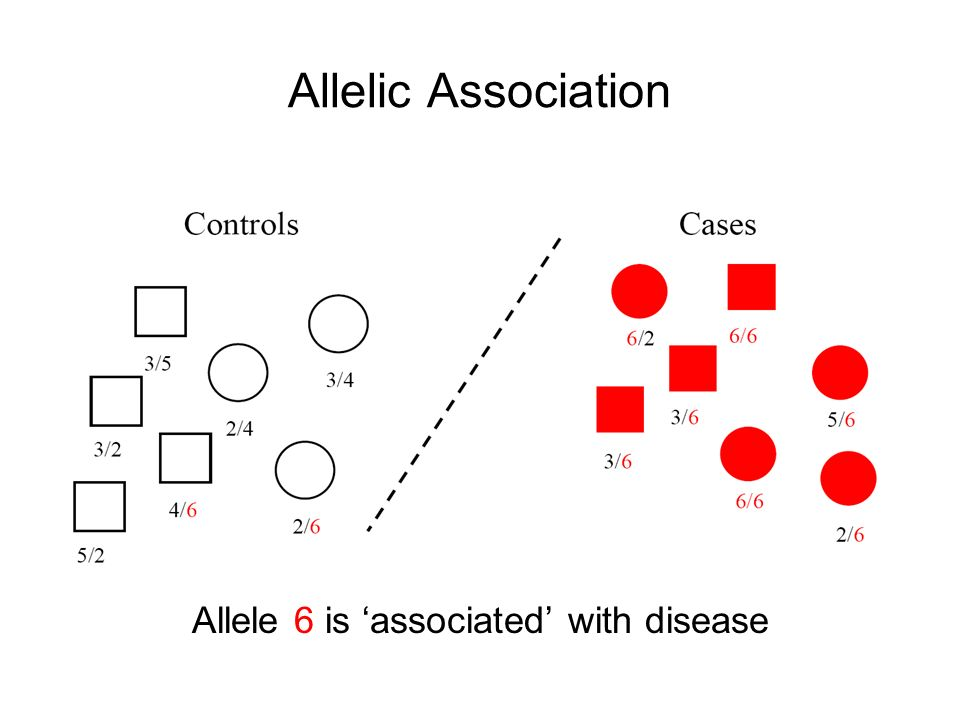 Allele 6 is 'associated' with disease