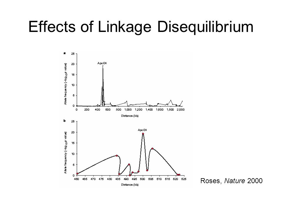 Effects of Linkage Disequilibrium