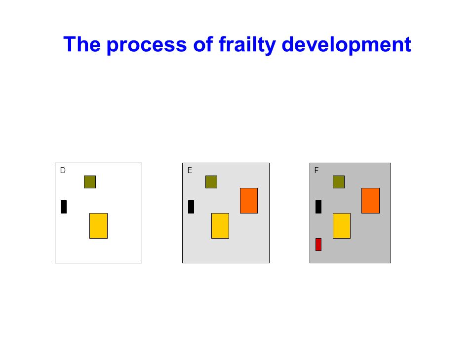 The process of frailty development