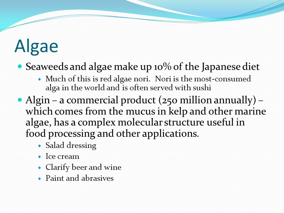 how to say algae in japanese