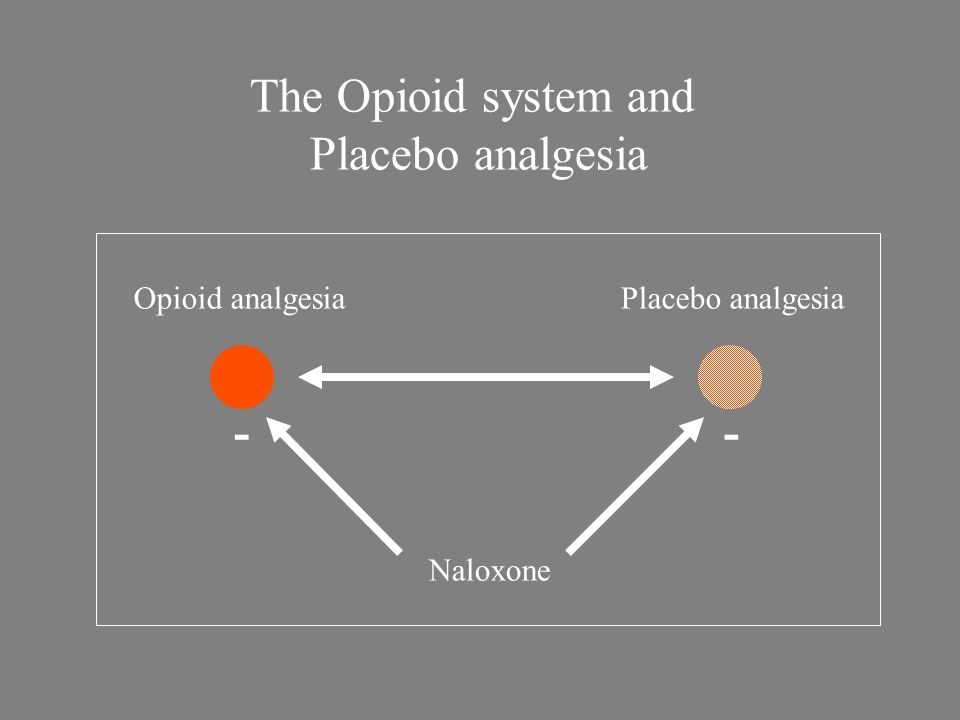 The Opioid system and Placebo analgesia - - Opioid analgesia