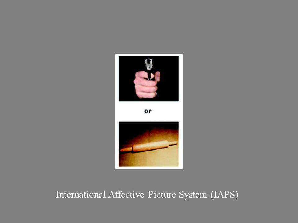 International Affective Picture System (IAPS)