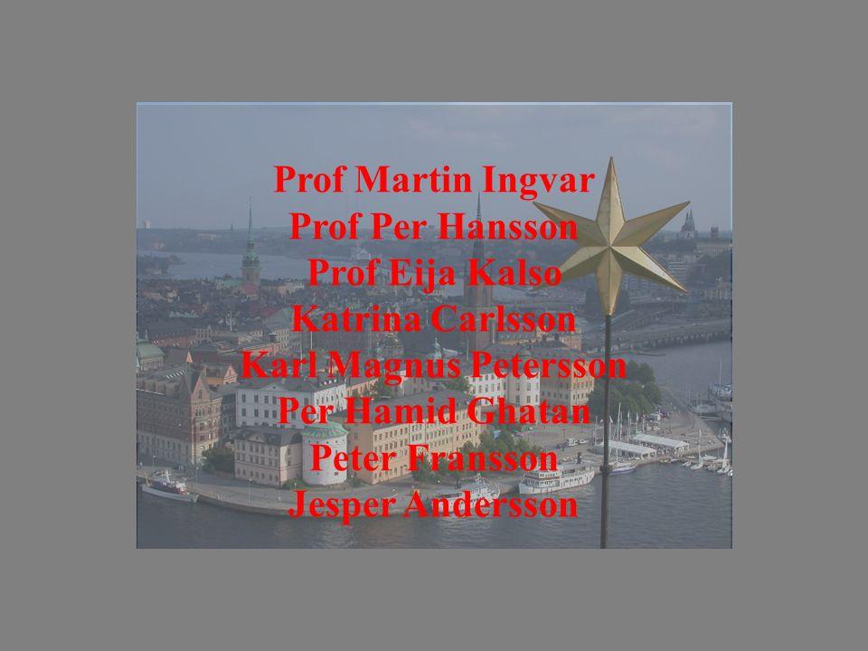 Prof Martin Ingvar Prof Per Hansson. Prof Eija Kalso. Katrina Carlsson. Karl Magnus Petersson. Per Hamid Ghatan.