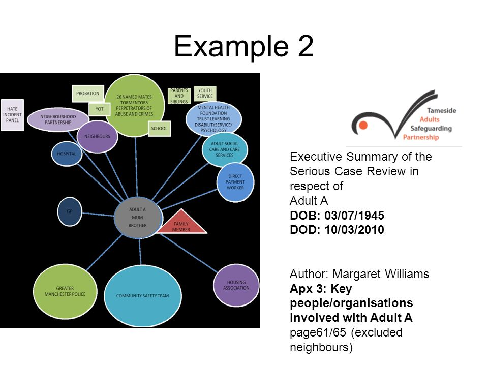 Example 2 Executive Summary of the Serious Case Review in respect of
