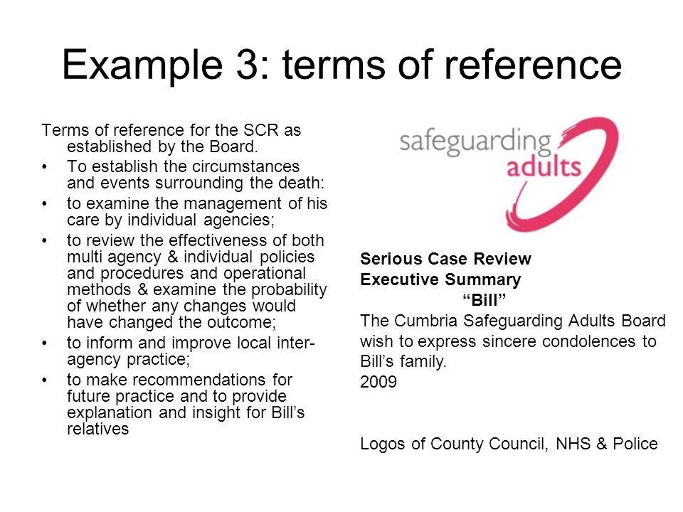 Example 3: terms of reference