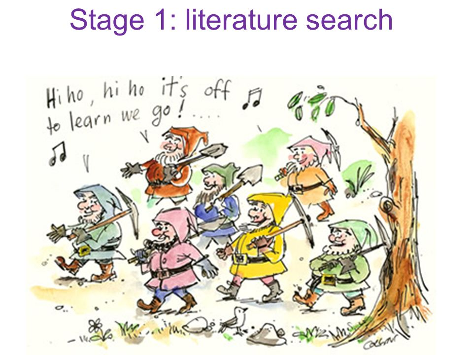 Stage 1: literature search