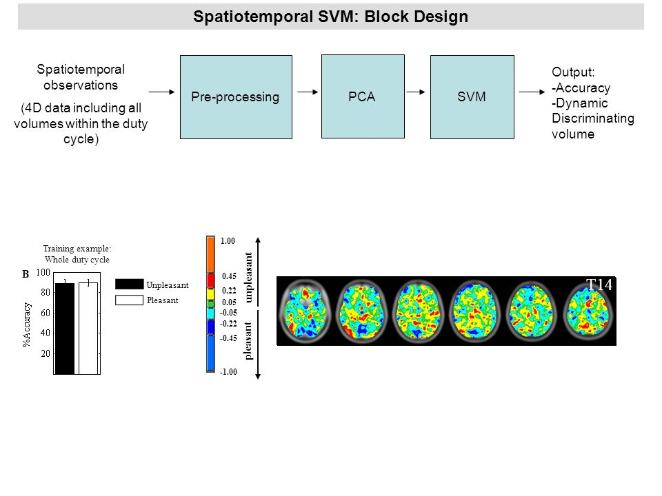 Spatiotemporal SVM: Block Design