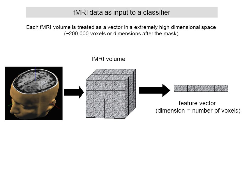 fMRI data as input to a classifier