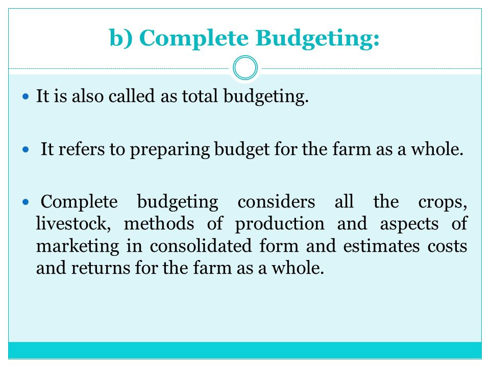 form for budgeting