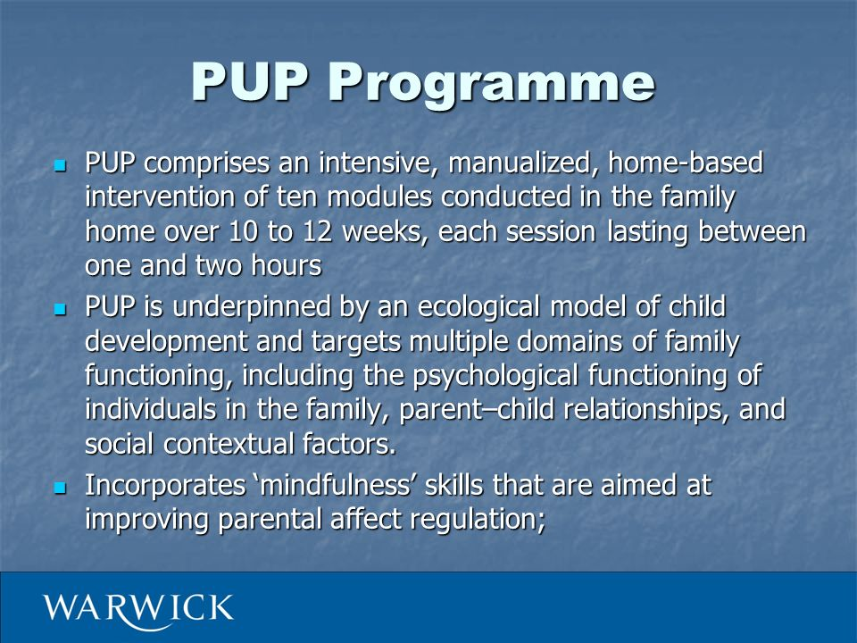 PUP Programme