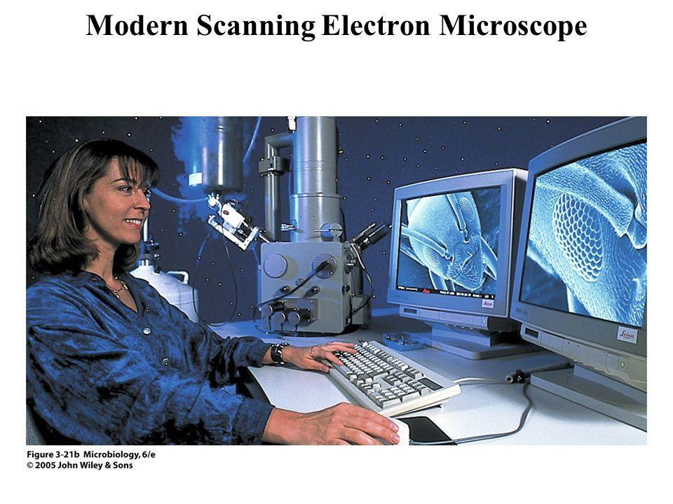 Modern Electron Microscope To Do Electron Microsc...