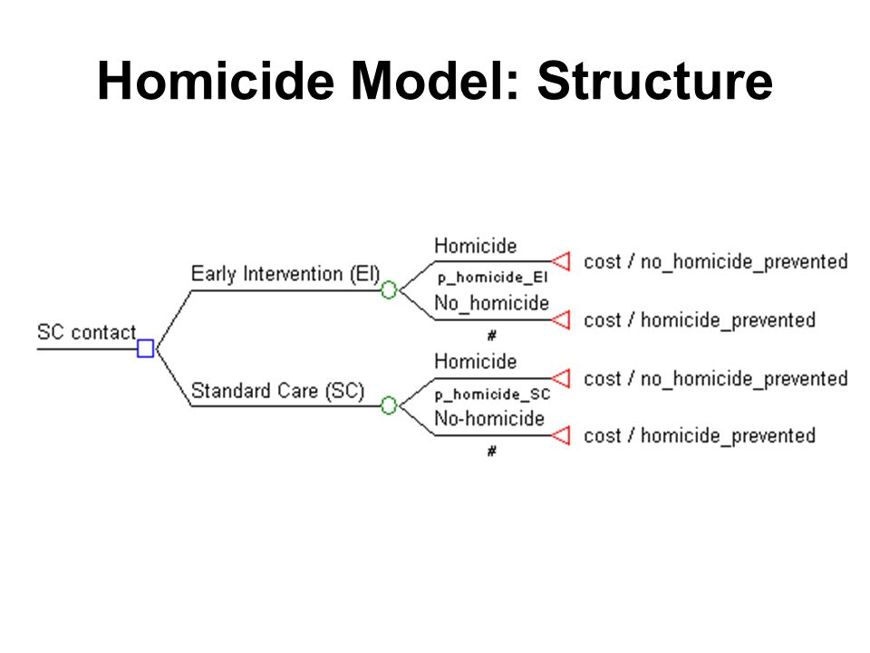 Homicide Model: Structure