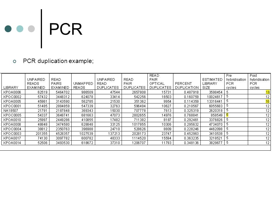 PCR PCR duplication example;