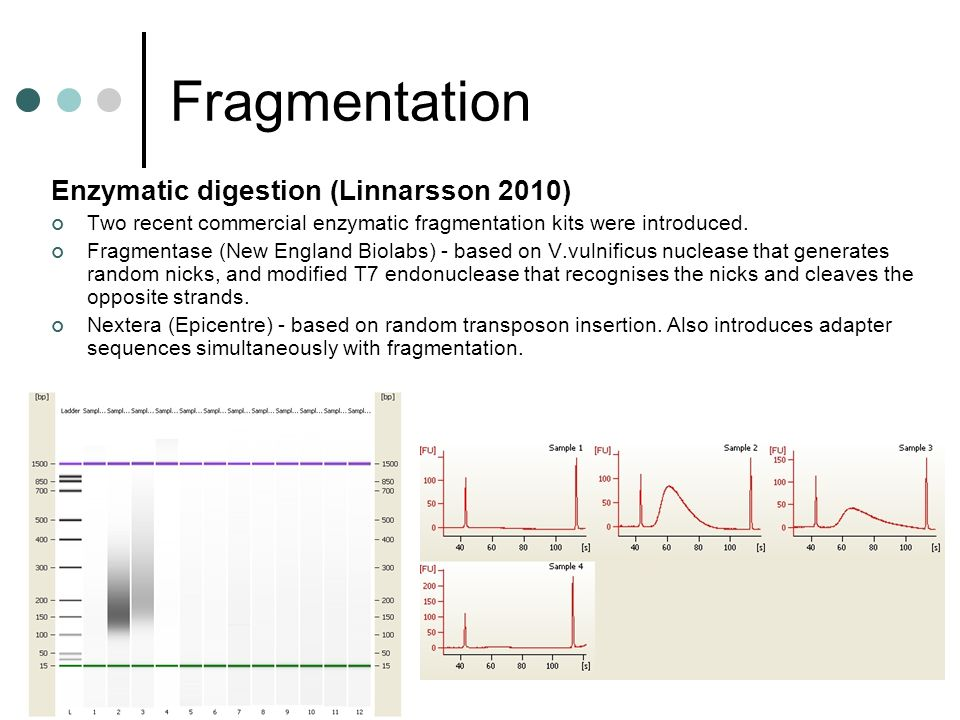 Fragmentation Enzymatic digestion (Linnarsson 2010)