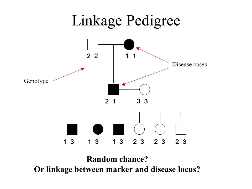 Or linkage between marker and disease locus
