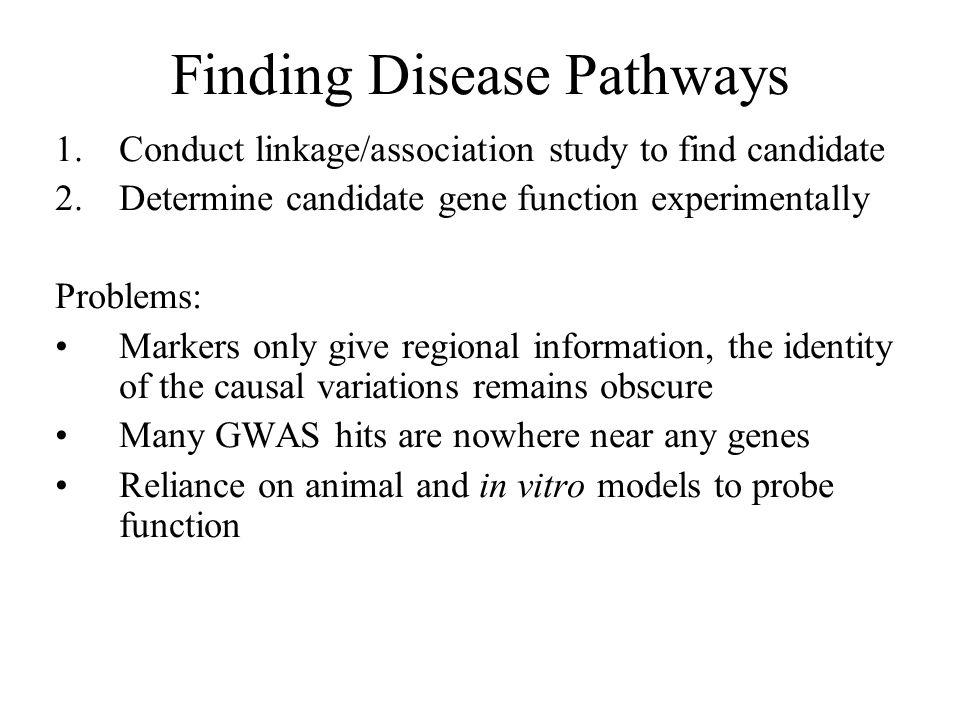 Finding Disease Pathways