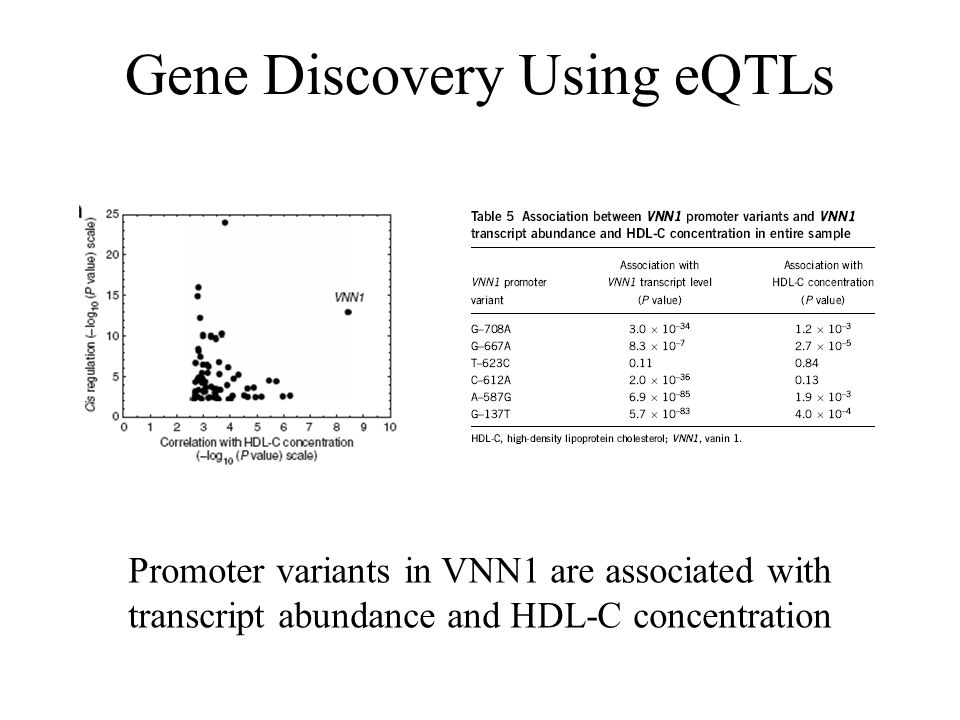 Gene Discovery Using eQTLs