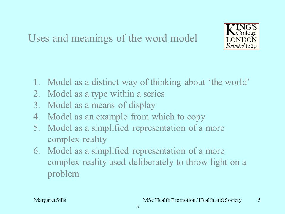 Uses and meanings of the word model