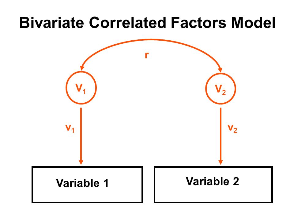 Bivariate Correlated Factors Model