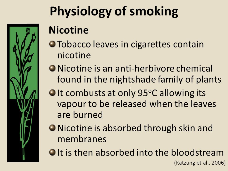 Physiology of smoking Nicotine