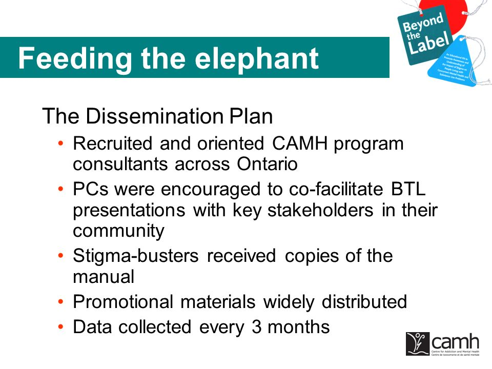 Feeding the elephant The Dissemination Plan