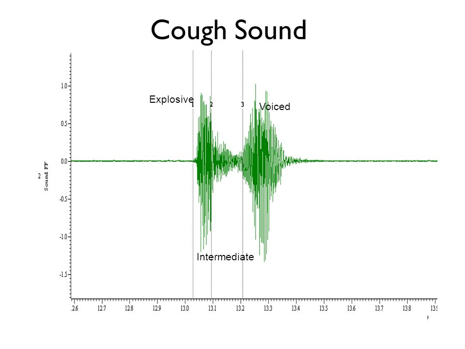 Cough Sound Explosive Voiced Intermediate